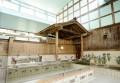 浴場内に東屋があり、その下に檜風呂が