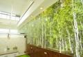 壁面を飾るのは森林のグリーン。