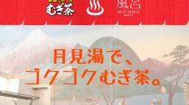 11/23から『伊藤園むぎ茶』を<br>無料配布@月見湯温泉